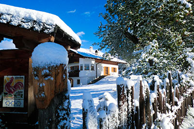 Winter am Gastreinhof